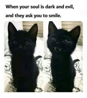 Memes, Smile, and Evil: When your soul is dark and evil,  and they ask you to smile.