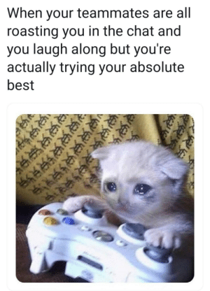 meirl by LT_DANS_ICECREAM MORE MEMES: When your teammates are all  roasting you in the chat and  you laugh along but you're  actually trying your absolute  best meirl by LT_DANS_ICECREAM MORE MEMES