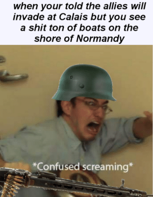 *screams in mg42*: when your told the allies will  invade at Calais but you see  a shit ton of boats on the  shore of Normandy  Confused screaming* *screams in mg42*