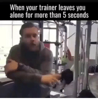 Being Alone, Funny, and Com: When your trainer leaves you  alone for more than 5 seconds 😂😂😂 funniest15 viralcypher funniest15seconds Www.viralcypher.com