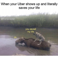 "Drunk, Life, and Lol: When your Uber shows up and literally  saves your life  @thenewsclan  you saved  my life  ok I hate it when u feel safe n vent to ur uber driver all ur issues and they're like ""'mam I'm not an Uber driver, ur in a police car, ur drunk, ur being arrested for showing up at ur ex's house again and ur like lol r u a Gemini bc I feel like we're really connecting"""