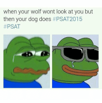 I slept for 6 hours: when your wolf wont look at you but  then your dog does  PSAT 2015  PSAT I slept for 6 hours