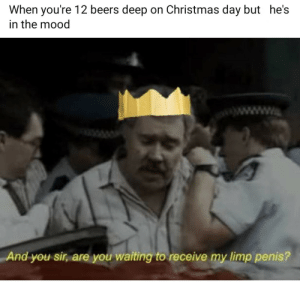 Gay🎄irl: When you're 12 beers deep on Christmas day but he's  in the mood  www.  And you sir, are you waiting to receive my limp penis? Gay🎄irl