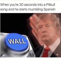 Lmfao 😂 @thefunnyintrovert: When you're 30 seconds into a Pitbull  song and he starts mumbling Spanish  WALL Lmfao 😂 @thefunnyintrovert