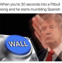 Spanish, Pitbull, and Song: When you're 30 seconds into a Pitbull  song and he starts mumbling Spanish  WALL <p>Mr. Worldwide</p>