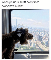 Girl Memes, Bullshit, and Pin: When you're 3000 ft away frorm  everyone's bullshit  EMOVE  DOOR LOCK PIN And it's still not far enough. @flyblade gets it. 🚁