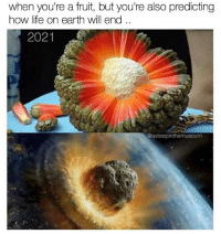 Life, Memes, and Earth: when you're a fruit, but you're also predicting  how life on earth will end  2021  @asleepinthemuseum KABOOM ☄️💥💥 (follow my frens @stuffthatlookslikestuff before it's too late 😵)