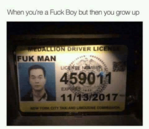 Tumblr, Blog, and Evolve: When you're a Fuck Boy but then you grow up  ALLION DRIVER LICE  FUK MAN  459011  11/13/2017- memehumor:  Some people never change, instead they evolve.
