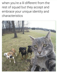 Funny, Identity, and Unique: when you're a lil different from the  rest of squad but they accept and  embrace your unique identity and  characteristics Lmao