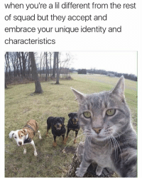 Memes, 🤖, and Identity: when you're a lil different from the rest  of squad but they accept and  embrace your unique identity and  characteristics Lmaoo😂 tag the squad👇😭