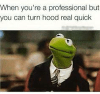 frog meme: When you're a professional but  you can turn hood real quick