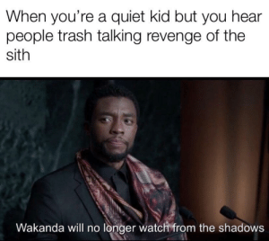 Revenge, Sith, and Trash: When you're a quiet kid but you hear  people trash talking revenge of the  sith  Wakanda will no longer watch from the shadows It's treason then