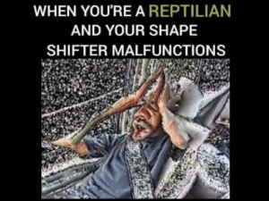 https://t.co/srr5e1FKsv: WHEN YOU'RE A REPTILIAN  AND YOUR SHAPE  SHIFTER MALFUNCTIONS https://t.co/srr5e1FKsv