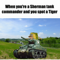 ~ HistoryFan1914: When you're a Sherman tank  Commander and you spot a Tiger ~ HistoryFan1914
