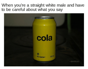 Funny, White, and Thought: When you're a straight white male and have  to be careful about what you say  cola  ho name  355 ml  BOCREEKS I thought I made a funny one