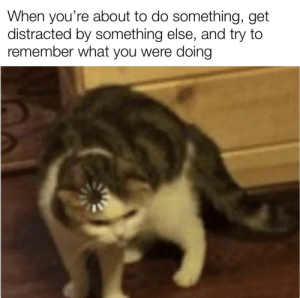 Anyone else have it happen to them?: When you're about to do something, get  distracted by something else, and try to  remember what you were doing Anyone else have it happen to them?