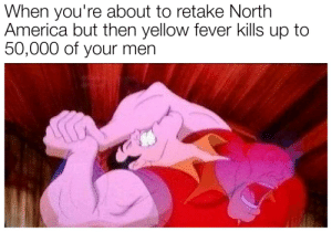 America, Bad, and France: When you're about to retake North  America but then yellow fever kills up to  50,000 of your men France? More like bad! (Got 'em)
