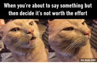 Dank, 🤖, and Via: When you're about to say something but  then decide it's not worth the effort  VIA 9GAG.COM Trying to argue online be like http://9gag.com/gag/a2m2jZw?ref=fbp
