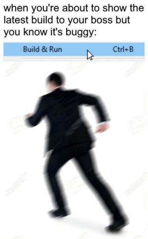 Run, Programmer Humor, and Boss: when you're about to show the  latest build to your boss but  you know it's buggy  Build & Run  Ctrl+B Build & Run