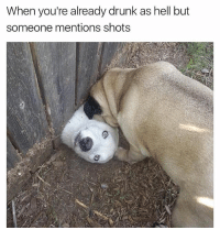 Drunk, Friday, and Memes: When you're already drunk as hell but  someone mentions shots If shots don't scream Friday eve I don't know what does 🥃 . . . . . iwasrestingmyeyes butnowimready . . . 👉 Snapchat : TheSlothYodeler 👈