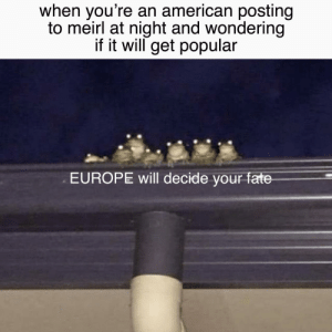 meirl: when you're an american posting  to meirl at night and wondering  if it will get popular  EUROPE will decide your fate meirl