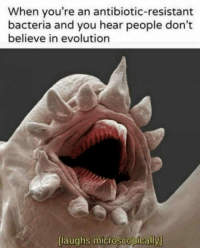 "Club, Tumblr, and Blog: When you're an antibiotic-resistant  bacteria and you hear people don't  believe in evolution  [laughs microscopically] <p><a href=""http://laughoutloud-club.tumblr.com/post/162596115788/har-har-har"" class=""tumblr_blog"">laughoutloud-club</a>:</p>  <blockquote><p>Har har har!</p></blockquote>"