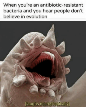 Club, Tumblr, and Blog: When you're an antibiotic-resistant  bacteria and you hear people don't  believe in evolution  [  laughs microscopically  ] laughoutloud-club:  Har har har!