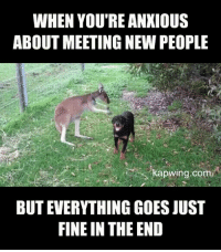 "Http, Com, and Via: WHEN YOU'RE ANKIOUS  ABOUT MEETING NEW PEOPLE  kapwing.com  BUT EVERYTHING GOES JUST  FINE IN THE END <p>No stranger danger here via /r/wholesomememes <a href=""http://ift.tt/2DwcEjQ"">http://ift.tt/2DwcEjQ</a></p>"