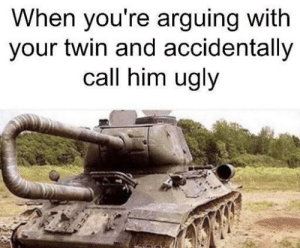 Dank, Memes, and Target: When you're arguing with  your twin and accidentally  call him ugly Are you sure about that by HairyFatBack MORE MEMES