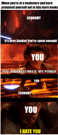 Books, Power, and You: When you're at a bookstore and have  promised yourself not to buy more books  ECONOMY  It's over Anakin! You've spent enough!  YOU  YOU UNDERESTIMATE MY POWER  YOU  ECONOMY  YOU  I HATE YOU