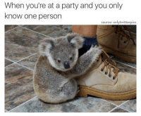 Memes, Party, and Yo: When you're at a party and you only  know one person  source: onlytwitterpics Social butterfly's put yo' hands up 🦋😂