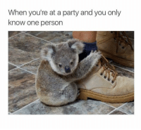introvertproblems:  If you can relate follow @introvertproblems: When you're at a party and you only  know one person introvertproblems:  If you can relate follow @introvertproblems