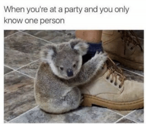 Never let go via /r/funny https://ift.tt/2qq7OyG: When you're at a party and you only  know one person Never let go via /r/funny https://ift.tt/2qq7OyG
