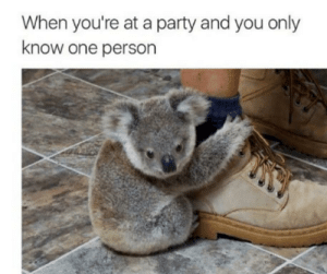 Hold on my friend by -umop-apisdn MORE MEMES: When you're at a party and you only  know one person Hold on my friend by -umop-apisdn MORE MEMES