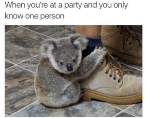 Me irl by mynameisAC FOLLOW 4 MORE MEMES.: When you're at a party and you only  know one person Me irl by mynameisAC FOLLOW 4 MORE MEMES.