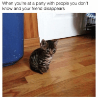 [🎶All by myself🎶 intensifies] caturday plsdontleefme: When you're at a party with people you don't  know and your friend disappears [🎶All by myself🎶 intensifies] caturday plsdontleefme