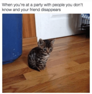 Why you are doing that my friend via /r/funny https://ift.tt/2uRWwFj: When you're at a party with people you don't  know and your friend disappears Why you are doing that my friend via /r/funny https://ift.tt/2uRWwFj