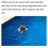Friends, Ironic, and Low Key: When you're at a pool with your friends  and you're low-key drowning because you  can't swim but you don't wanna ruin the  fun Sound familiar? @justawutle
