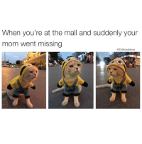"Memes, Ferocious, and Entitled: When you're at the mall and suddenly your  mom went missing  Dr Smashlove I remember when this shit happened I started crying immeejally and mall security come up to me like it's ok we'll page your mama no problem little boy. Then my mama come up all panicked like ""oh thank God I was terrified, God bless you."" And right then and there I thought ""damn what a ordeal this must at least entitle me to McDonald's ☺️"". AW HELL NAH. That shmack came with the ferocious intensity of a shark bite. And then the speech: ""OH SO YOU JUST GONNA RUN AWAY. WHAT WERE YOU DOING. SMELLING THE COLOGNES. LOOKING AT CLOTHES. WHATEVER YOU DID YOU WEREN'T STAYING CLOSE TO ME WHICH IS WHAT YOU WERE *SUPPOSED* TO DO."" And then the guilt trip. But my mama never played no normal guilt trip. It was never ""I hope you learn from my pain and suffering 😔."" It was always 18x darker and more depressing: ""I HOPE YOUR KIDS GET KIDNAPPED SO YOU GO WHAT I GO THROUGH."" Ok. Mama. Again. That's asymmetrical. U here now...whoopin my MF ass. Why u gotta WISH upon me that some asshole in a white van LITERALLY STEAL MY FUTURE CHIRREN AND COMPROMISE THEM. Crazy ass mama Bruh I tell u. Can't negotiate with a crazy mama. She just crazy, chemically 🤗. Nah but I love u tho, u da real MVP 😂😂😂"