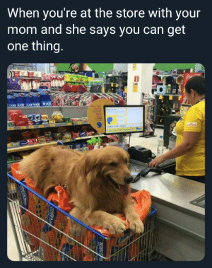 Thanks Mom by Borkin_Bandit MORE MEMES: When you're at the store with your  mom and she says you can get  one thing  10% Thanks Mom by Borkin_Bandit MORE MEMES