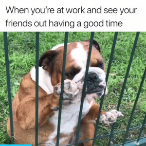 This is the worst 💔: When you're at work and see your  friends out having a good time This is the worst 💔