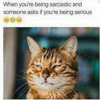 Sarcastic Meme: When you're being sarcastic and  someone asks if you're being serious