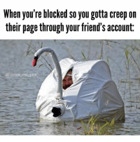 When you're blocked so you gotta creep on  their page through your friend's account:  @humor me pink Like a ninja in the night 💋 truth relatable creepin lol betches basic qotd wordsofwisdom