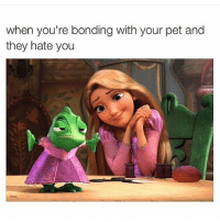 Love me you little shit!! Repost from my sassy pants @sassy__bitch69 ❤️ Make sure you're following @sassy__bitch69 @sassy__bitch69 @sassy__bitch69 @sassy__bitch69: when you're bonding with your pet and  they hate you Love me you little shit!! Repost from my sassy pants @sassy__bitch69 ❤️ Make sure you're following @sassy__bitch69 @sassy__bitch69 @sassy__bitch69 @sassy__bitch69