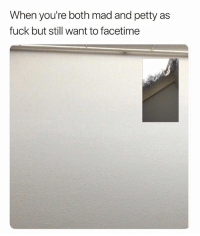 Facetime, Petty, and Fuck: When you're both mad and petty as  fuck but still want to facetime Real Petty. 😅😂😅