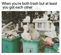 """Af, Memes, and Trash: When you're both trash but at least  you got each other <p>Wjen u trashy af but at least you got each other via /r/memes <a href=""""http://ift.tt/2Cmoivd"""">http://ift.tt/2Cmoivd</a></p>"""