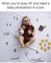 Af, Funny, and Love: When you're busy AF and need a  baby photoshoot in a box  1 2  2  1 O  4  9  8  6  7  bby booth bax  monlh We're in love with this baby photoshoot in a box by @babyboothbox! New surprise themes available while supplies last! The perfect baby shower gift. Use code SARCASM to get 25% OFF your first order!!! Free US shipping & flat rate WORLDWIDE SHIPPING.