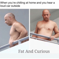Funny, Home, and Fat: When you're chilling at home and you hear a  loud car outside  Fat And Curious 😂😂😂