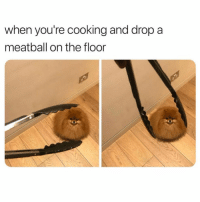 Funny, Meme, and Cooking: when you're cooking and drop a  meatball on the floor 5 second rule @meme.w0rld 😂