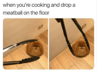 Cooking, Youre, and Drop: when you're cooking and drop a  meatball on the floor Many lols